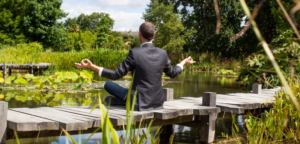 corporate green break - zen middle age male professional practicing yoga on a wooden bridge in the middle of an asian-like green pond for company wellbeing,back view with park foreground