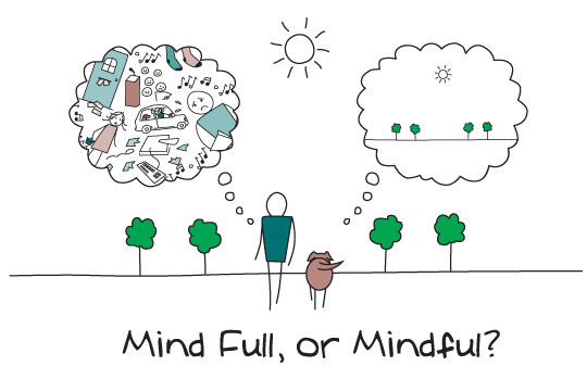 mindful-or-Full